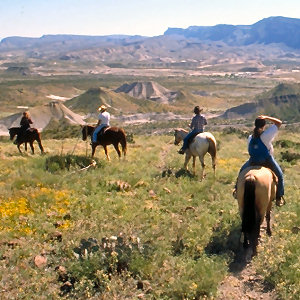 Rider-Friendly Terlingua Motel Horses Welcome!